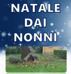 NATALE CON I NONNI-CRONACA